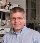 Charles Bessey Professor  Director, Redox Biology Center Profile Image